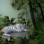 Koty-7-150x150 Zwierzęta