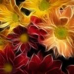 Kwiaty-36-150x150 Kwiaty