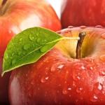 Owoce-21-150x150 Owoce