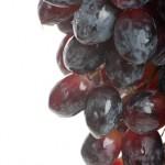 Owoce-63-150x150 Owoce