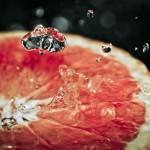 Owoce-9-150x150 Owoce